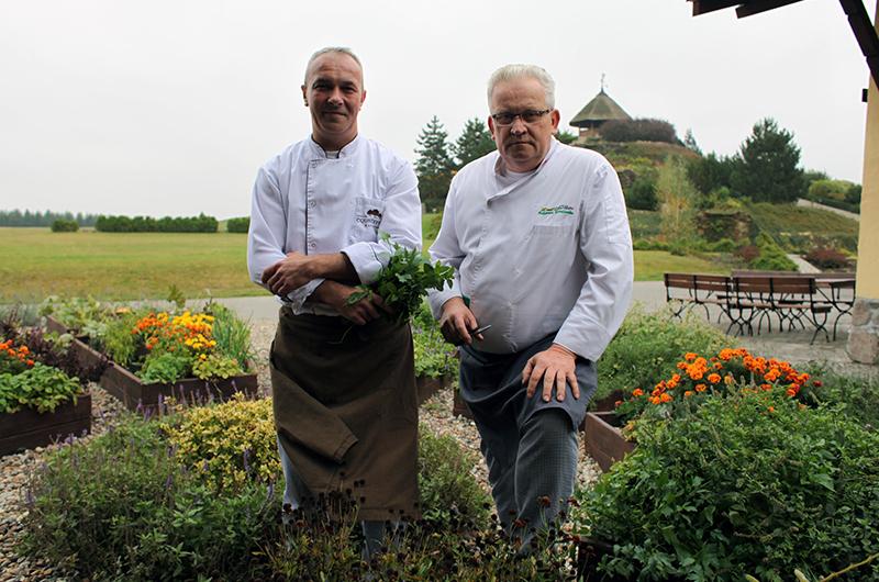 kucharze ogród
